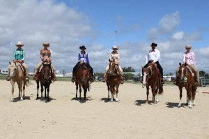 Placegetters in the JLT Bloodstock Open Western Pleasure Feature at the AQHA NZ QH Nationals from right to left 1st Winderadeen Some Sugar, 2nd Winderadeen One Hot Blaze, 3rd Winderadeen Samson, 4th SVQ No Chics Too Easy, 5th Deluxe Invitation, 6th Riarma's Slip Me an Invite
